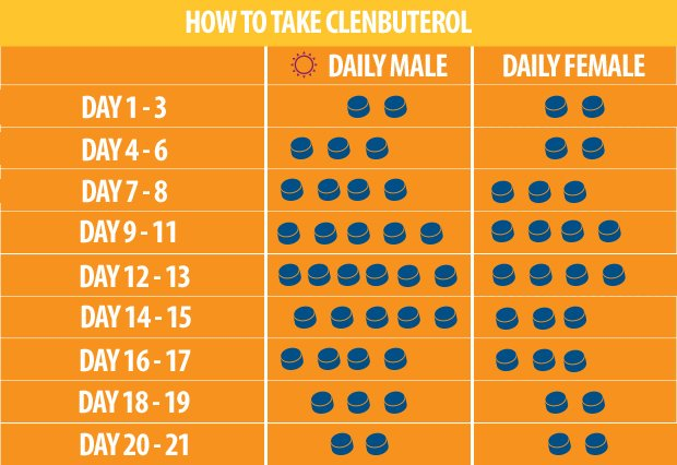 Clenbuterol Cycle Guide Dosage Effects