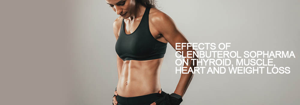 Clenbuterol For Women: Dosage, Results & Side Effects